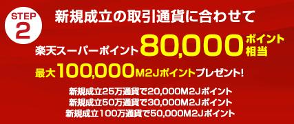 マネースクウェアジャパン 通常キャンペーン